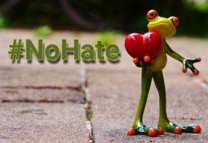 no-hate_Frog